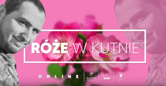 [WIDEO] Jakie róże rosną w Kutnie? KDK zaprasza na wyjątkowe spotkanie z królową kwiatów! - Zdjęcie główne