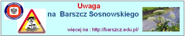 Uważaj na Barszcz Sosnowskiego - Zdjęcie główne