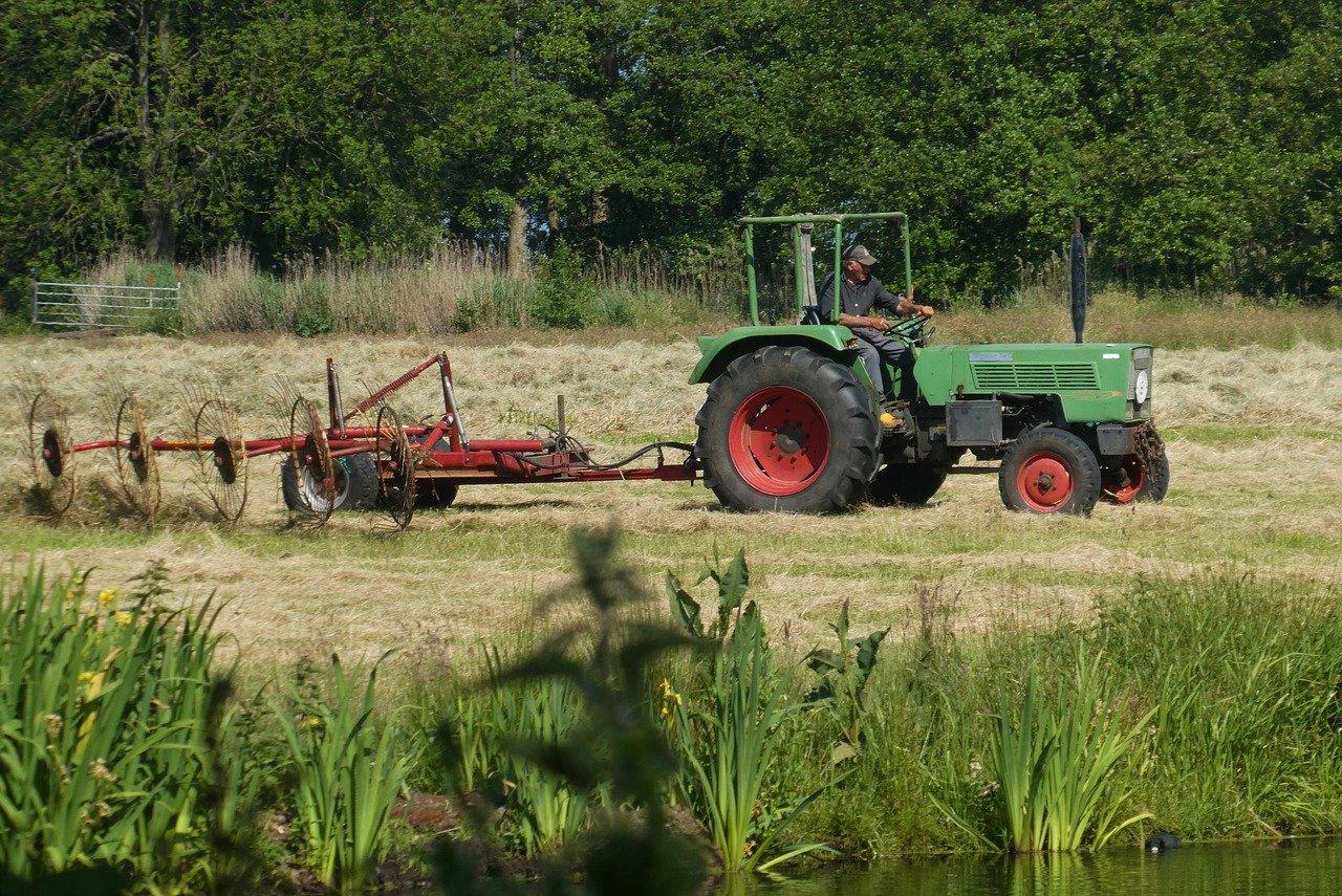 Uwaga rolnicy: rząd udziela kolejnych dotacji. Jak z nich skorzystać?  - Zdjęcie główne