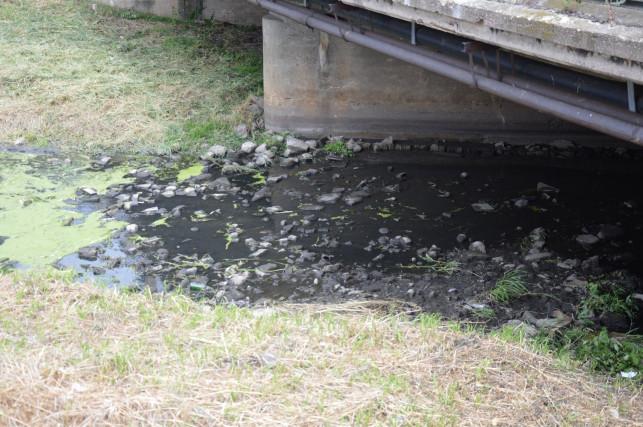 Mieszkańcy biją na alarm: poziom wody w Ochni jest bardzo niski - Zdjęcie główne