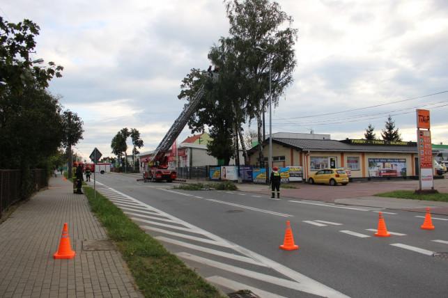 [ZDJĘCIA] Akcja straży na Łęczyckiej. Musieli zablokować drogę - Zdjęcie główne