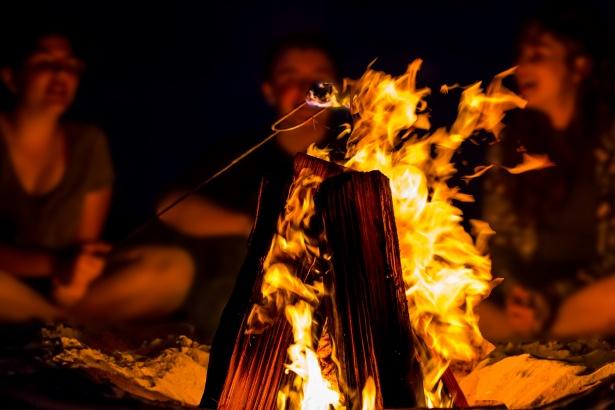 Akcja Sprzątania Świata pod Kutnem. W planach ognisko na Dzień Dziecka - Zdjęcie główne