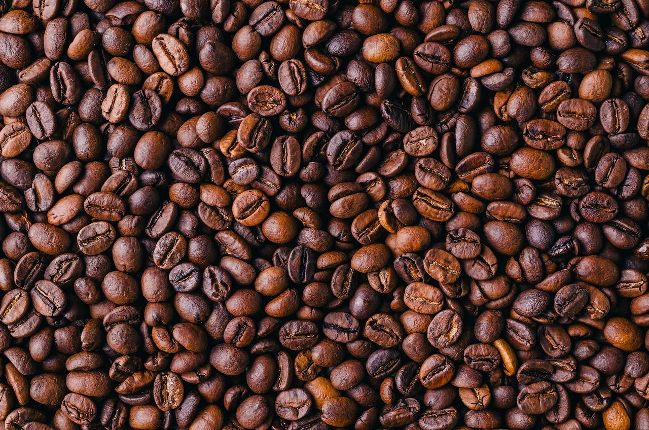 Kawa dla początkujących - jak wybrać najlepszą? - Zdjęcie główne