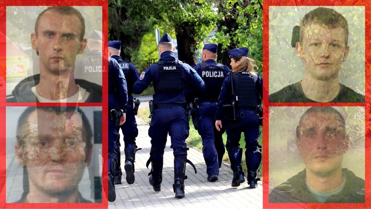 Kradzieże, włamania i rozboje. Tych złodziei szuka kutnowska policja [ZDJĘCIA] - Zdjęcie główne