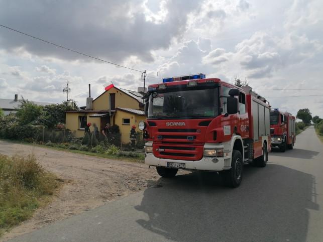 [ZDJĘCIA] Pożar pod Krośniewicami, błyskawiczna akcja strażaków - Zdjęcie główne