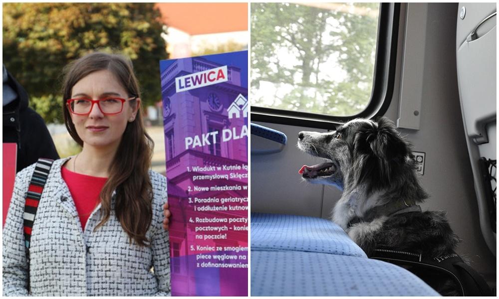Podróż pociągiem z psem to niemałe wyzwanie. Kutnowska posłanka wystosowała zapytanie do ministerstwa  - Zdjęcie główne