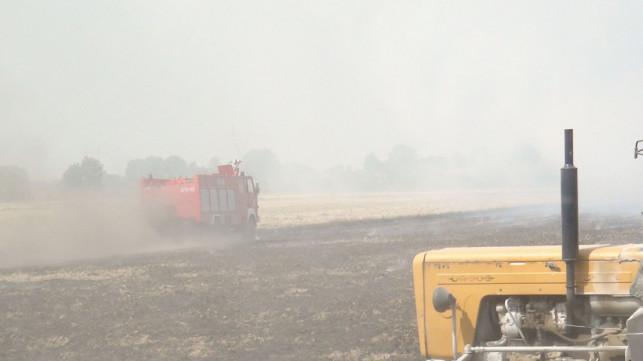 [WIDEO] Trwają ogniste żniwa - Zdjęcie główne