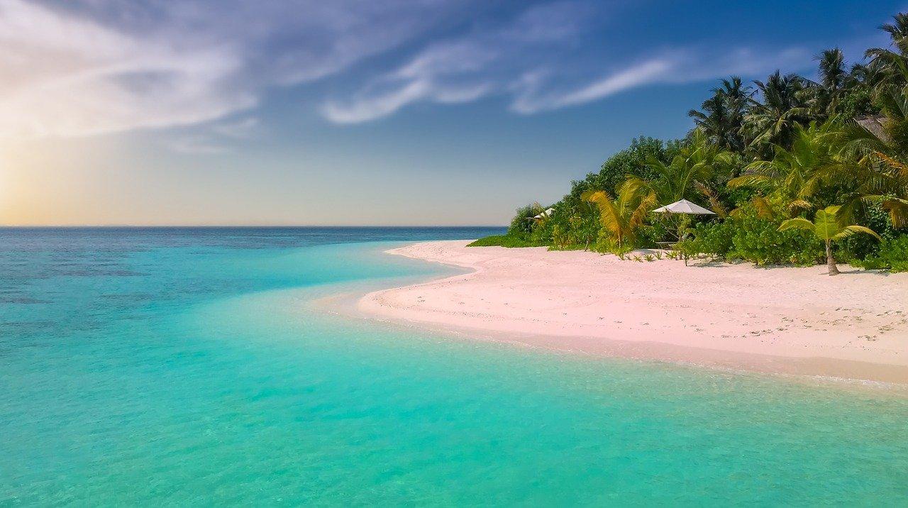 W kraju, czy pod palmami? Zobacz, jak tegoroczne wakacje spędzą mieszkańcy naszego regionu   - Zdjęcie główne