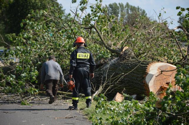 Gmina Bedlno: Poszkodowani przez nawałnicę otrzymają pomoc - Zdjęcie główne