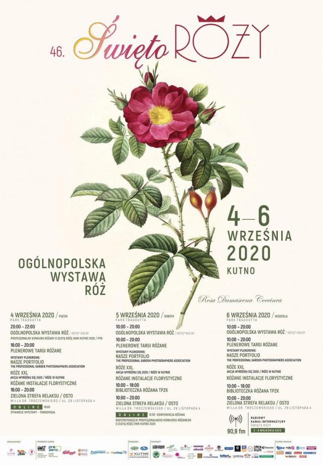 Nasz patronat: Dziś otwarcie Święta Róży. Po raz pierwszy on-line [PROGRAM][DODATEK] - Zdjęcie główne