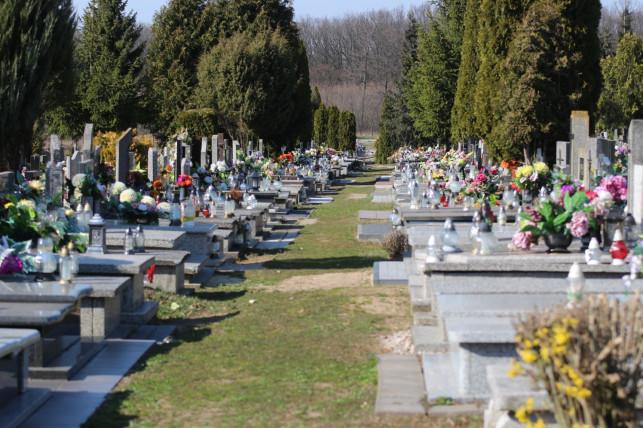 Będzie inwestycja na cmentarzu? - Zdjęcie główne