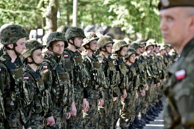 Do wojska przez... internet - Zdjęcie główne