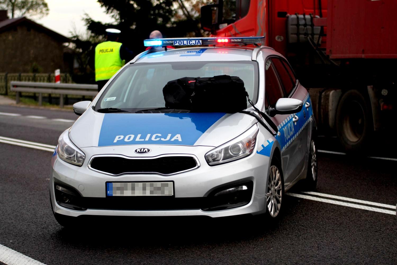 BMW zderzyło się z łosiem na autostradzie. Groźnie pod Kutnem - Zdjęcie główne