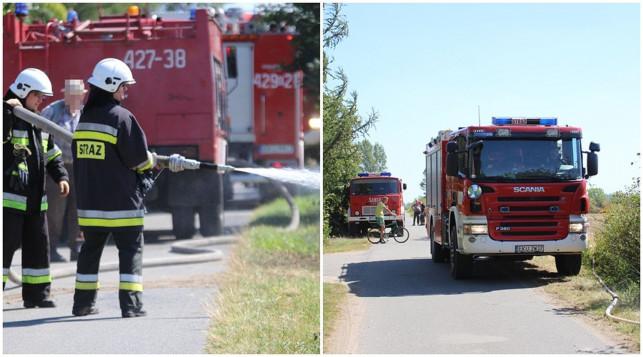 [ZDJĘCIA] Ponad 20 strażaków w akcji. Paliło się pod Dąbrowicami - Zdjęcie główne