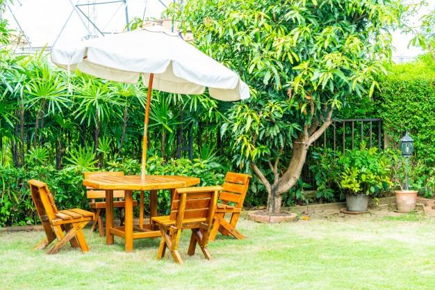 Jak przygotować ogród na lato?  - Zdjęcie główne