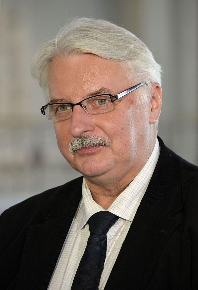 Witold Waszczykowski w WSGK - Zdjęcie główne