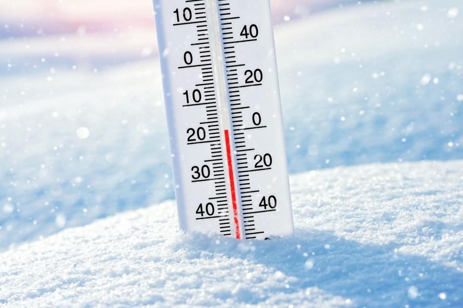 Szykuje się mroźna noc w Kutnie i okolicach. Temperatura spadnie poniżej... - Zdjęcie główne