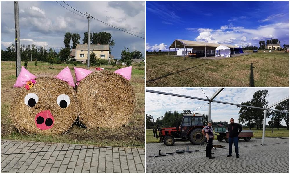 W Dąbrowicach praca wre. Trwają przygotowania do dożynek powiatowo-gminnych [ZDJĘCIA] - Zdjęcie główne