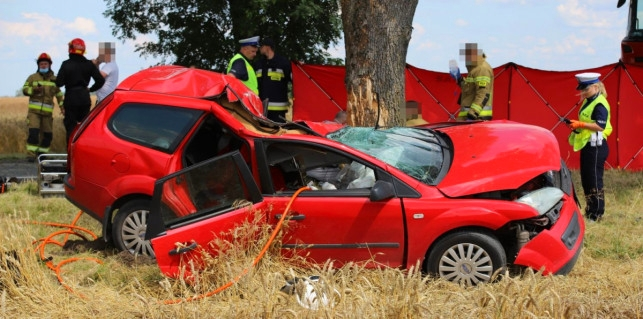 Tragiczny bilans wypadków z udziałem pijanych kierowców. Nasz region w czołówce niechlubnego rankingu - Zdjęcie główne