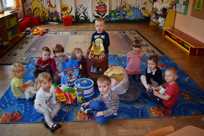 Świąteczna paczka dla zwierząt w Przedszkolu nr 1 - Zdjęcie główne