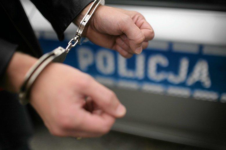 Zuchwała kradzież na terenie zamku - sprawca w rękach policji - Zdjęcie główne