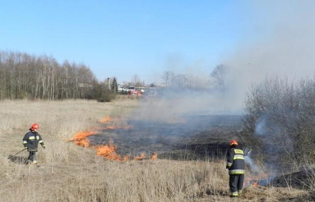 Płoną trawy w powiecie - straż apeluje o ostrożność! - Zdjęcie główne
