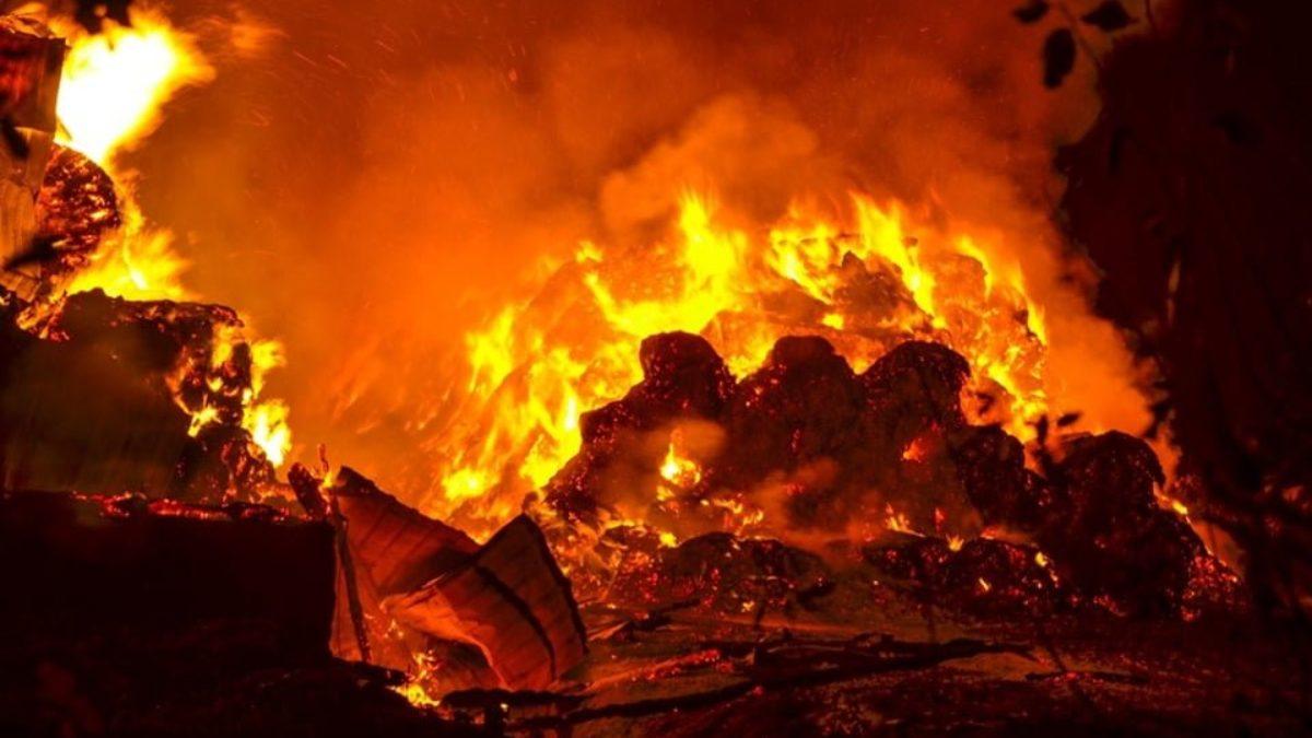 Pożar w kamienicy przy Poznańskiej! Nie żyje kobieta - Zdjęcie główne