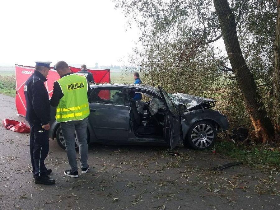 Śmiertelny wypadek! Audi rozbite na drzewie, kierowca zginął na miejscu - Zdjęcie główne