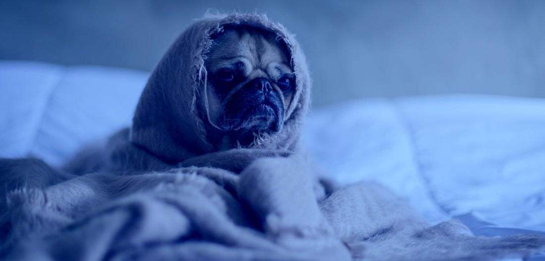 """Jak się czujecie? Dzisiaj Blue Monday, czyli """"najbardziej depresyjny dzień w roku"""" - Zdjęcie główne"""