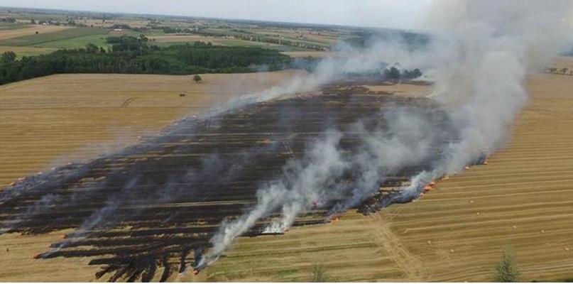 Duży pożar. Wezwano 30 zastępów straży pożarnej - Zdjęcie główne