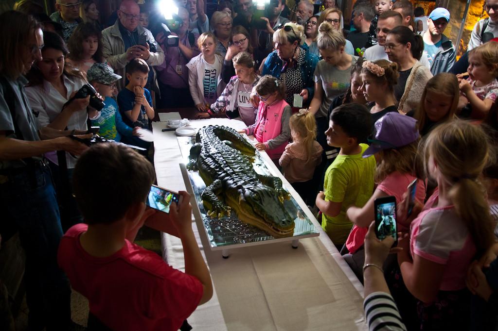 Tłumy płocczan na urodzinach Marty - Zdjęcie główne