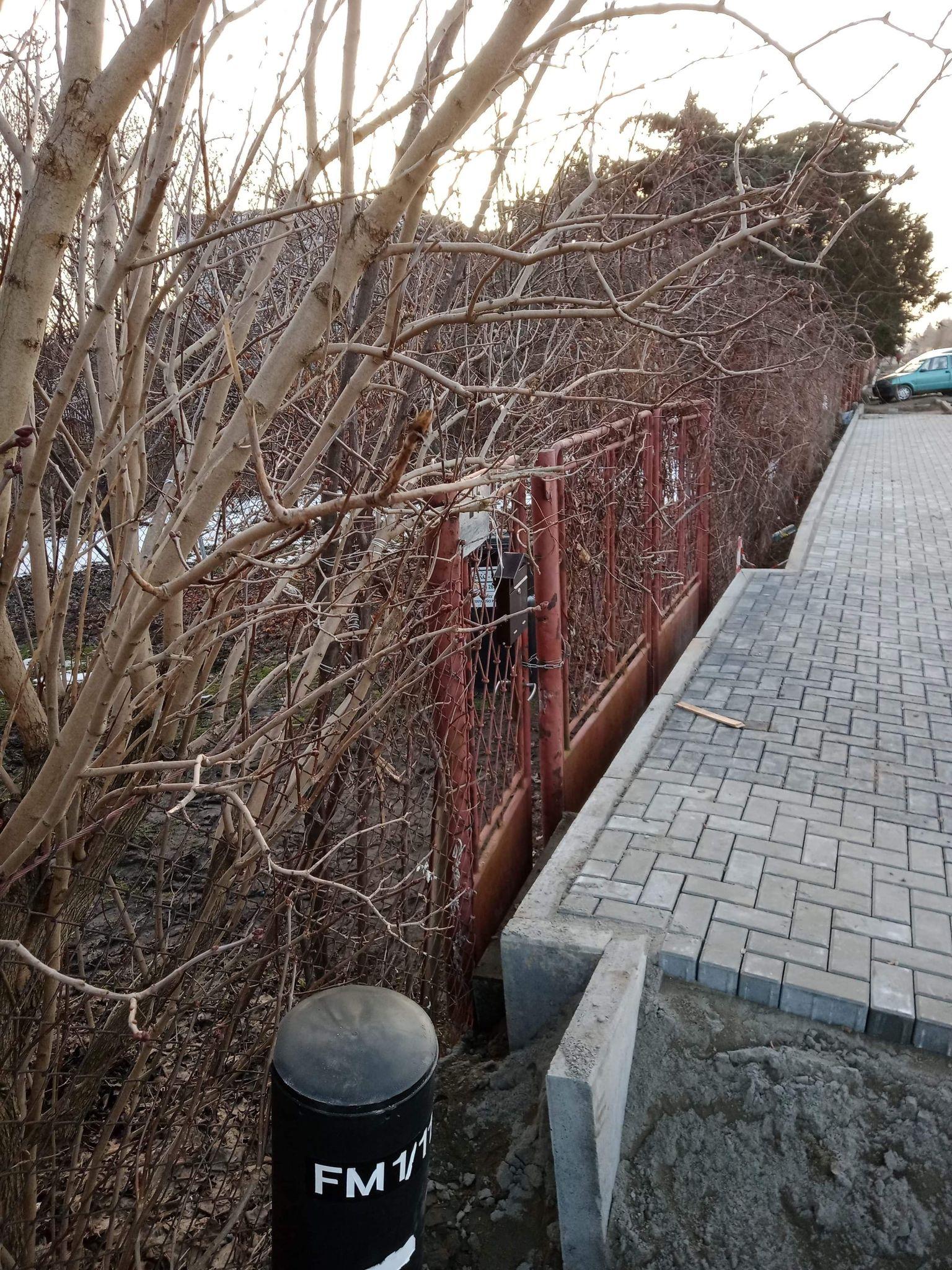 Sesja rady miasta: zamiana działek,  dotacje na przyłącza kanalizacyjne w ul. Boryszewskiej, kasa na remont SP 17 - Zdjęcie główne
