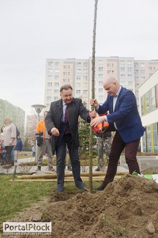 Jak prezydent z marszałkiem drzewa sadzili - Zdjęcie główne