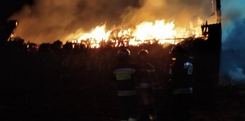 Pożar pod Płockiem. Płonął budynek gospodarczy ze zwierzętami - Zdjęcie główne