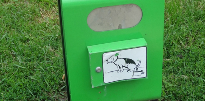 Trawniki to ohydne pole minowe! Apelują, by sprzątać po psach - Zdjęcie główne