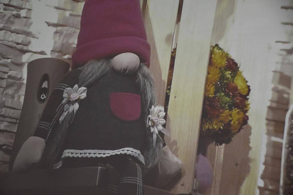 Zamieszają w garach babci Krysi - Zdjęcie główne