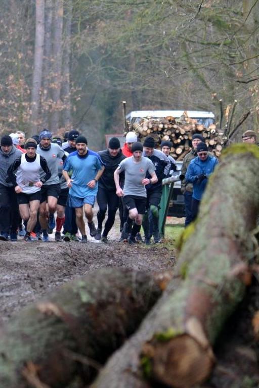 Terytorialsi biegali po pięknym parku - Zdjęcie główne