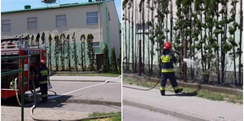 Zapalił się dach jednej ze szkół. Interweniowała straż pożarna - Zdjęcie główne