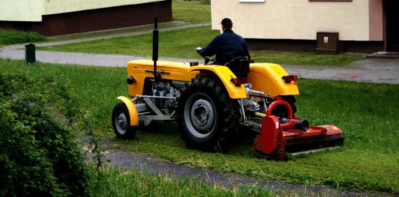 Miasto zawiesza koszenie traw ze względu na suszę - Zdjęcie główne