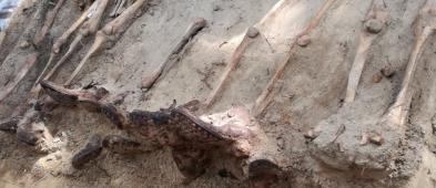Były ekshumacje na cmentarzu. Teraz ponowny pochówek - Zdjęcie główne