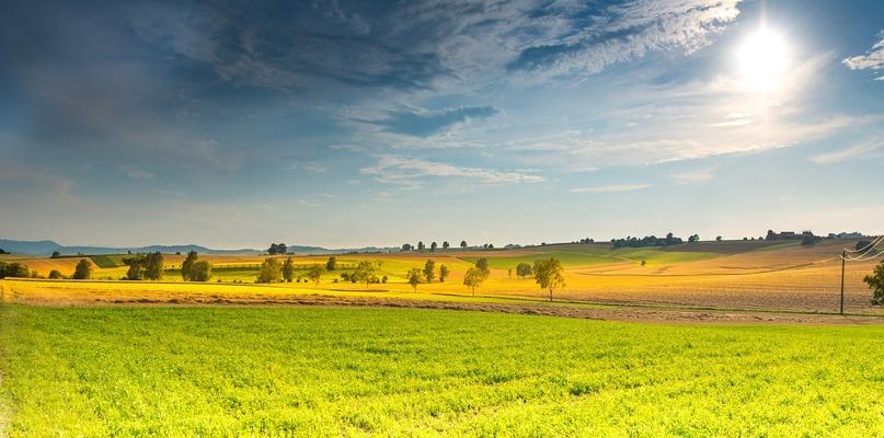 Zielone miejsca na wiosnę. Zwiedź dziką Polskę - Zdjęcie główne