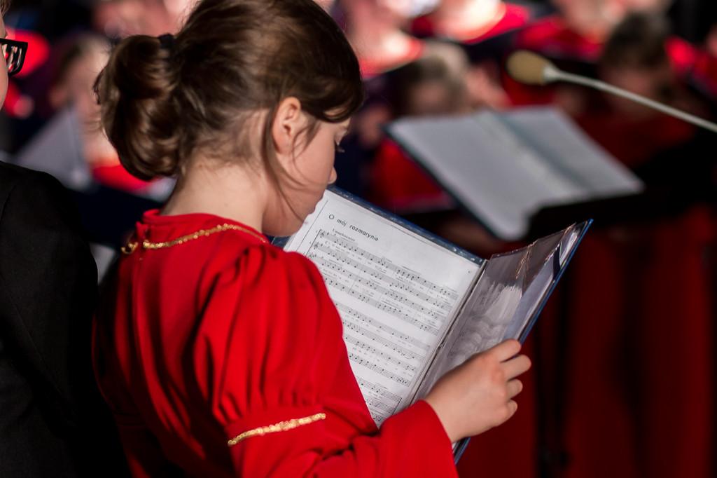 Koncert w Bazylice Katedralnej - Zdjęcie główne