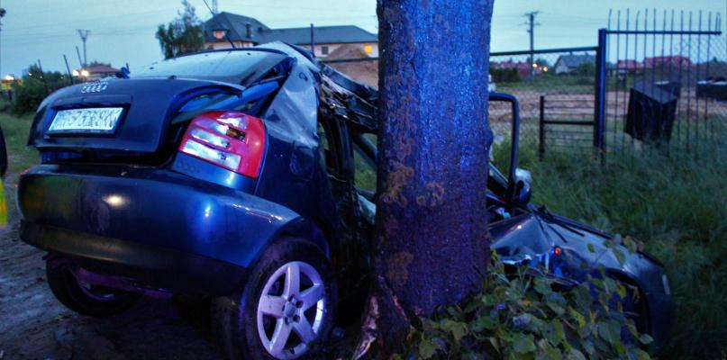 Samochód uderzył w drzewo. Ranny kierowca [ZDJĘCIA] - Zdjęcie główne