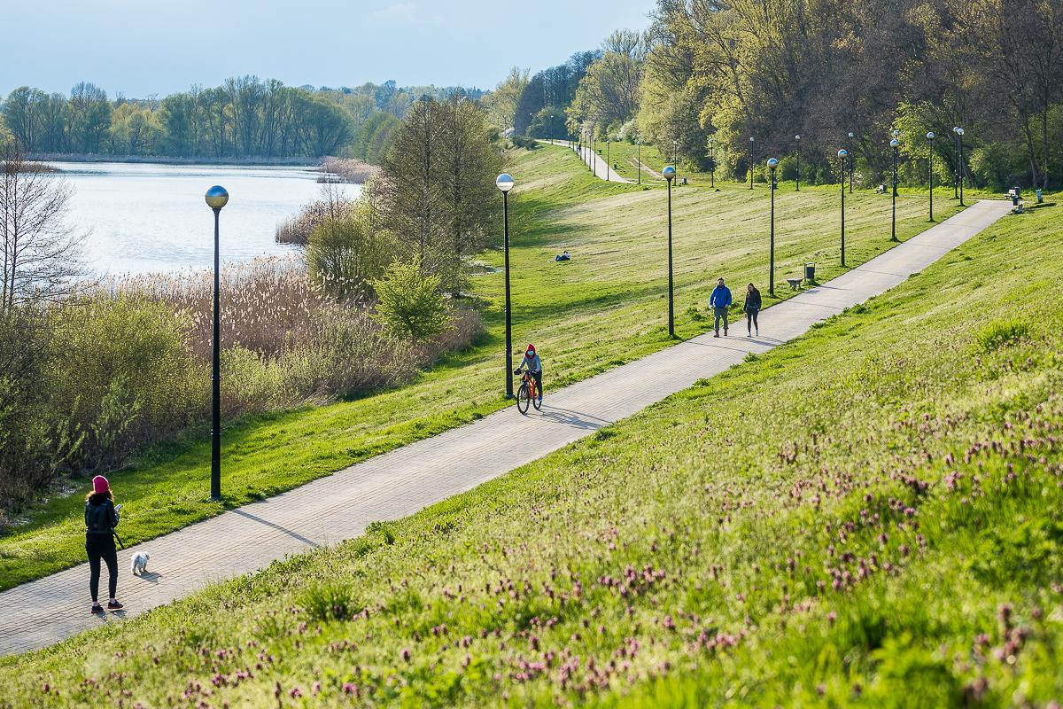Wiosna dotarła do Płocka. Zobaczcie, jak pięknie jest w mieście [ZDJĘCIA] - Zdjęcie główne