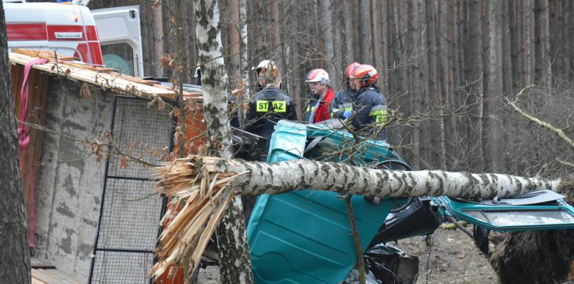 Śmierć na drodze. 54-letni mężczyzna rozbił się na drzewie [ZDJĘCIA] - Zdjęcie główne
