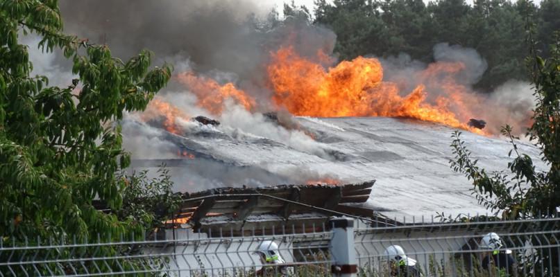 Potężny pożar w Sierpcu, płoną kurniki. A obok zbiorniki z gazem - Zdjęcie główne