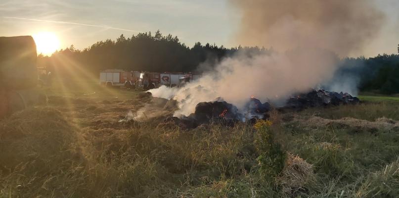 Pożar w powiecie płockim. Płonęły bele słomy - Zdjęcie główne