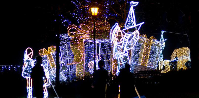 43 tysiące lampek na Wzgórzu Tumskim. Co w programie Płockich Ogrodów Światła?  - Zdjęcie główne