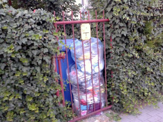 Toną w śmieciach z czerwca. A płacić trzeba - Zdjęcie główne