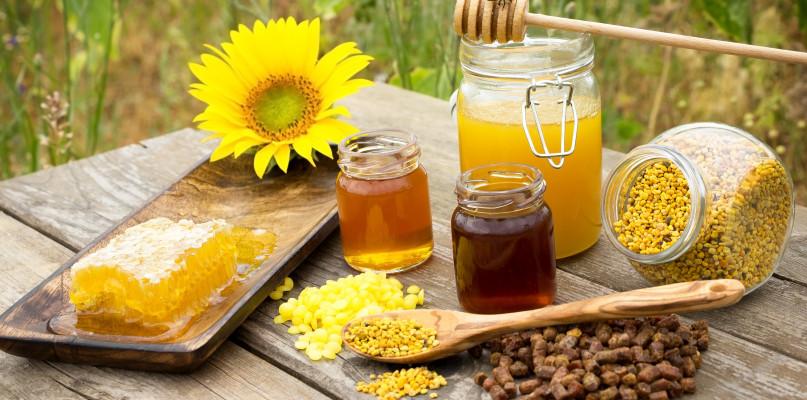Z ula nie tylko miód - znasz te produkty pszczele? - Zdjęcie główne